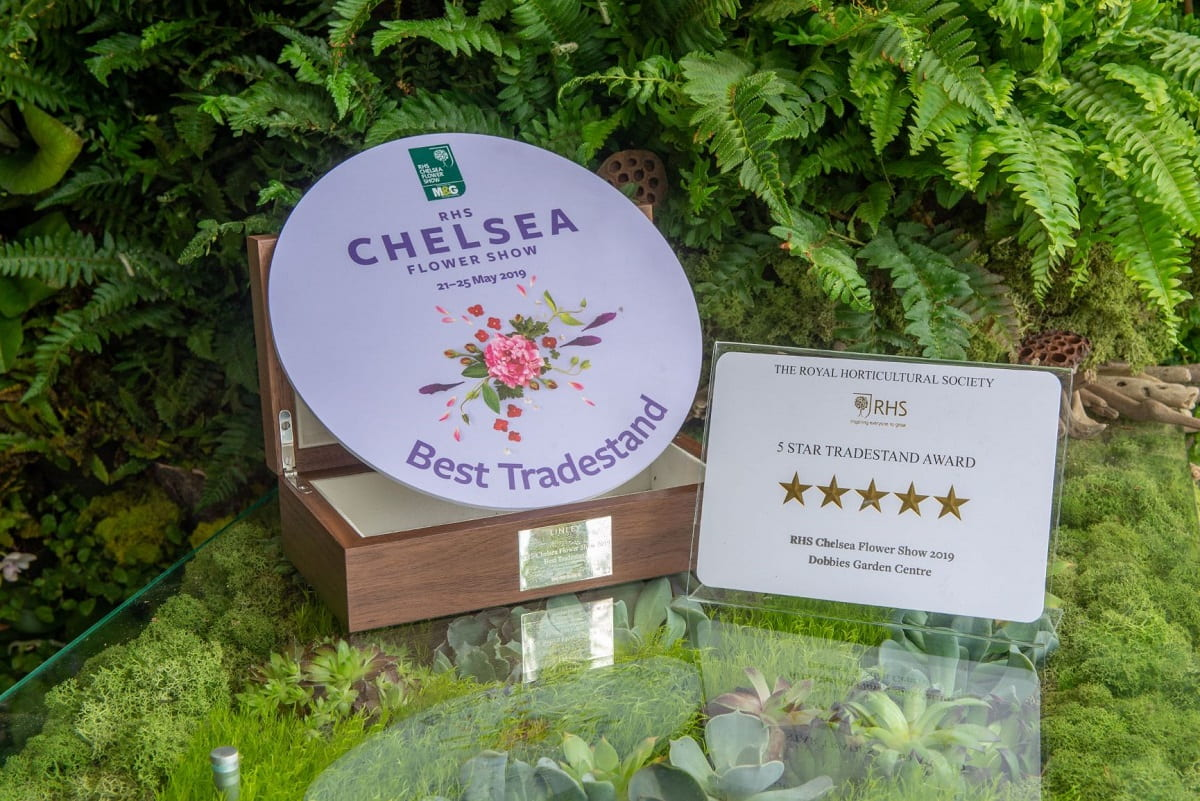 Chelsea Flower Five Star and Best Trade Plagues Living Walls