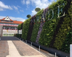 Chester Races living wall fence