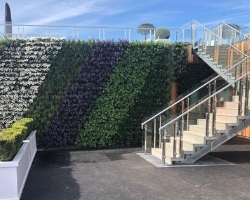Living Wall at Racecourse